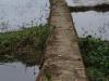 Langs de irrigatiekanalen zijn verharde- en onverharde smalle wegen