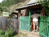 De plaatselijke kruidenier in Bol\'shoye Koty