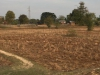 De rijstvelden zijn verdord, in het natte seizoen moet het hier prachtig groen zijn