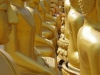 Boeddha's, rijen dik opgesteld achter de Gouden Boeddha