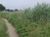 Het pad langs de Zweth is smal en onverhard