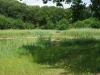 Natuurgebied Heveringen