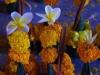 De offers, Wat Tham Phi Si