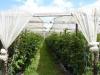 Immens grote aardbeien- en frambozenkwekerij