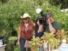 Deering Estate / Vizcaya Museum & Gardens