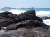 De kustlijn