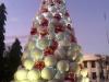 David (kerstboom)