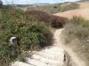 De oude Romeinse camino