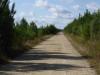 Eén lange, stoffige weg langs de A65