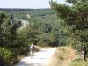 We vervolgen onze camino door het bos, de N120 ligt nu links van ons