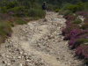 Het pad naar beneden, knieënsloper & kuitenbijter