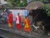 Het spoor loopt rakelings langs de huisjes in de buitenwijken