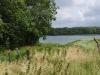Het pad langs het meer is overwoekerd