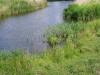 Natuurgebied De Holle Mare