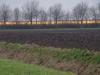 Kassen verlichten de Rietdijk