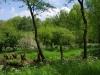 Natuurgebied De Klop