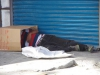 Daklozen, op of onder kartonnen dozen