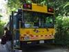 Met de bus van half 10 gaan we naar het nevelwoud Monteverde