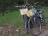 Aan de rand van het strand parkeren we onze fietsen, gratis !