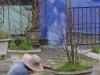 Hao Vãn Lē Nghîa, de bloempotten worden geverfd