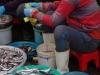 De visvrouwtjes op de markt