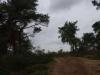 Groote Heide