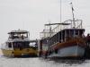 In de haven liggen de ferry's