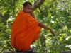 Een Boeddhist heeft telefonisch kontakt, met boven ?