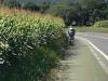 De laatste kilometers lopen we langs de weg terwijl auto's langs ons scheuren
