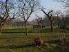 Park Woerden