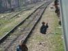 india-februari-2010-453