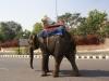 deel-1-india-050