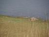 Rhanthambhore National Park, zone 2