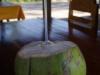 An bestelt kokosnoot, maar het is niet echt haar ding