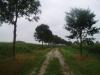 Brabantse land naar Haaren