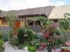 Casa Bella Flor , ren schattig, ommuurd hostel met rieten dak en een tuin vol met bloemen