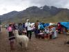 Vrouwen met alpaca's willen graag met je op de foto, tegen betaling uiteraard
