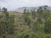 Op  de bergen werd een verdedigingsmuur gebouwd, The Inca Wall