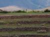 De oude, originele terrassen met op de achtergrond de spectaculaire bergen van de Andes