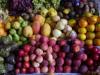 Heerlijk fruit