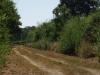Het asfalt maakt plaats voor een verhard karrespoor