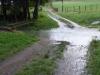 Het regent zo hard dat we het pad over het bruggetje moeten oversteken