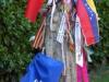 De Jacobus bij Casa Barbadelo is fraai getooid