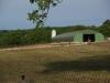 Corgnac-sur-l'Isle, een eendenfarm