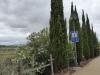 Even buiten Logroño lopen we door een park