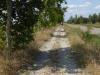 De laatste kilometers naar Mansilla de Las Mulas; het pad ligt bezaaid met bladeren van de platanen, want gisteren heeft het hier flink gestormd en gehageld
