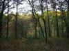 Het stroomgebied van La Sédelle is prachtig, vooral door de herfsttinten