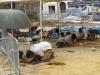 Archeologen zijn druk bezig met opgravingen rondom de kerk