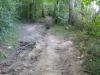 Het pad wordt steeds moeilijker begaanbaar en is flink steil