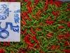 Rode en groene pepers